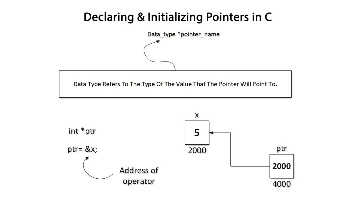 Initialize_Pointer_Variables_And_Address_Of_Operator CProgramming Questions Bank