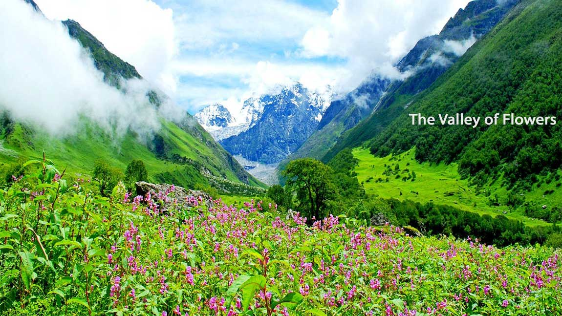 The_Valley_Of_Flowers Uttarakhand Place
